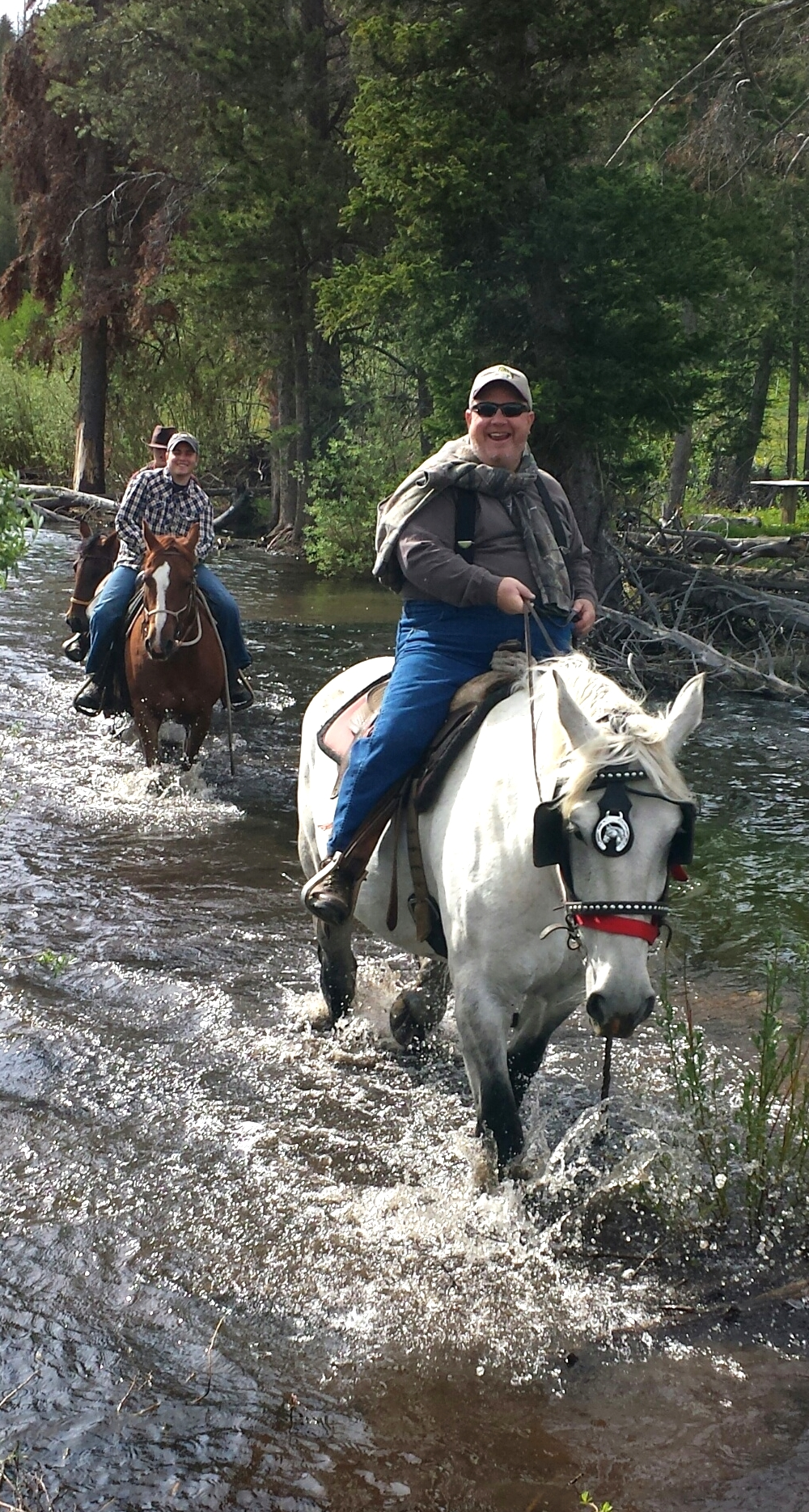 water crossing with horses
