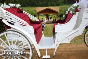 The carriage waiting during the ceremony