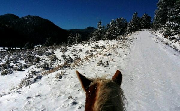 winterrides